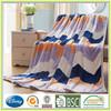 Queen Size Thermal Blanket Coral Fleece Blanket