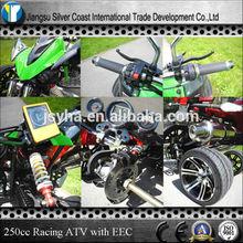 250cc EEC Racing ATV Road Legal Quad Bike ATV 250cc for Sale