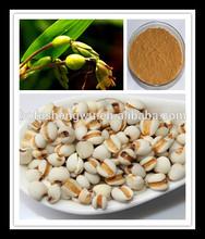 cornsilk extract,cornsilk,cornsilk extract powder