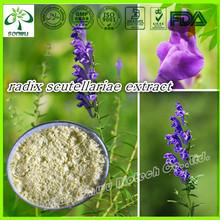 radix scutellariae extract/radix scutellariae/21967-41-9