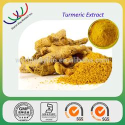 free sample HACCP KOSHRE FDA turmeric extract,raw material turmeric extract 95% curcumin
