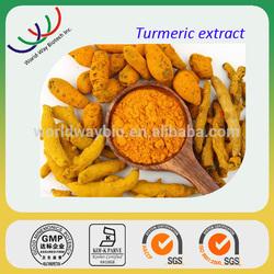 free sample HACCP KOSHER FDA turmeric extract,China supplier raw material turmeric extract curcumin