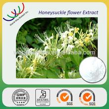 NATURAL free sample supply honeysuckle extract,5% chlorogenic honeysuckle flower extract flos lonicerae