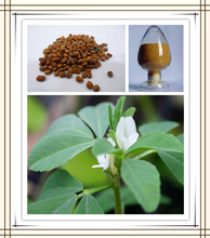 fenugreek plant extract,fenugreek extract 50% furostanol saponin