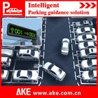 2014 Ake Intelligent Parking System