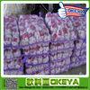 import chinese fresh garlic
