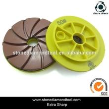 Diamond edge polishing pad in edge polishing disc