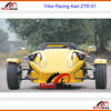 ZTR Trike Roadster China Trike Buggy 250cc Water Cooled engine Auto or Manual Clutch Optional