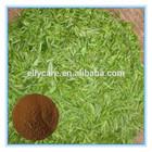 Green Tea Extract /Tea Polyphenol, Catechin, EGCG