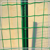 fence wire mesh in poland/high five wire fencing/garden fence iron wire mesh