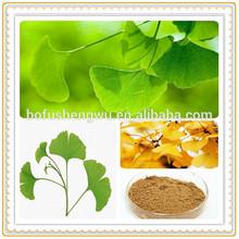 natural ginkgo biloba leaf extract powder/ginkgo biloba extract 24/ginkgo biloba l extract