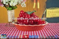Custom ceramic pie plate cheap price