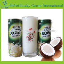 well taste cocos nucifera drink hot sale halal certificate drink