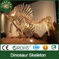 Lisaurus- los angeles tamaño original de esqueleto de dinosaurio réplica hecha en china