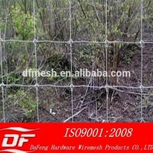 10. grassland fence&grassland wire mesh&grassland netting/nets(AnPing factory)