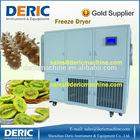 Top-quality Vegetable Freeze Dryer Saving Energy