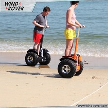 China New Brand Wind-Rover electric chariot, cheap electric car price for sale