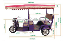 24Mosfets Controller electric passenger rickshaws for sale in india market