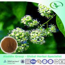 Natural Tripterygium Wilfordii Extract/ Tripterygium Glycosides Powder