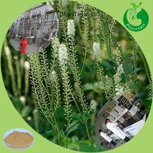 100% Pure Powdered Black Cohosh Extract/Black Cohosh