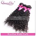 cabelo cartela de cores vermelha brasileira trama do cabelo