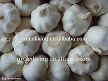 2014new normal white garlic