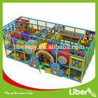 Children Educational/Kindergarten Playground Equipment Indoor Soft Play Structure for Kids Sale LE.T2.301.092