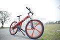 Flash China fabricante EN15194 250 W 500 W 36 V bateria de lítio bicicleta elétrica revendedor
