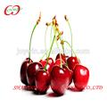 ricamente contém ferruginosa previne anemia rei dos frutos cereja a coisas mais baratos provenientes da china
