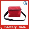 Promotional cheap OEM 6 can cooler bag for Man