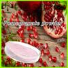 Natural instant dried pomegranate powder/pomegranate juice powder