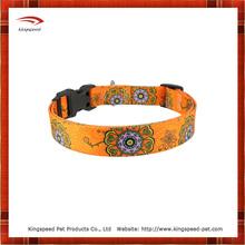 Kingly flower dog collar