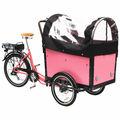 3-rad-elektro-ladung bike für kinder