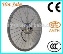 E-bike/Scooter motor/Spoke Motor, 2014 New 48V 250W Electric Motorcycle Bike Spoke Motor, amthi