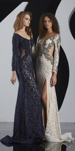 Gorgeous Appliqued V Neck Long Sleeve Sexy See-through Long Sleeve Lace Evening Gown