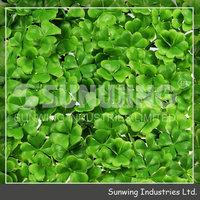 garden landscape artificial green wall for home use