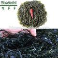 Meilleur prix pour la machine- varech séché populaire. ecklonia algues laminaires