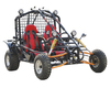 250cc GO KART FOR 2 Person