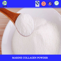 Wholesale Sole distributors wanted mix chocolate powder fish collagen powder