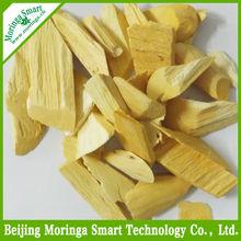 Moringa Stem Cuttings. Beijing Moringa Smart Technology Co., Ltd