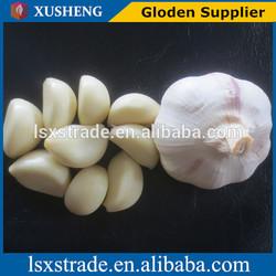 Certified GAP/ KOSHER/ HALAL/HACCP FRESH GARLIC