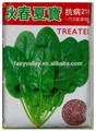 hojas de color verde f1 híbrido rojo tallo espinacas semillas para la venta