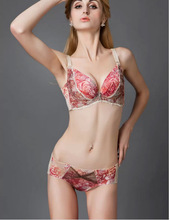 Ladies sexy product style and adult age group embroidered bra and panty sets