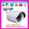 Outdoor Waterproof HD 720P Network IP Camera Night Vision smartphone