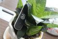 huawei módem usb 3g puerto de antena externa e353 tarjeta sim libre