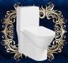 9198 bathroom porcelain squatting toilet water closet wc