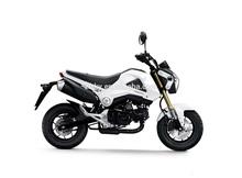 MSX125 kids mini dirt bike 110cc/125cc engine, kids pit bike, mini monkey