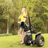 Two wheeled design for golf electric motorcycle