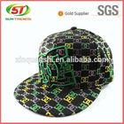 Custom Flat Brim Embroidery Snapback Cap/Hat