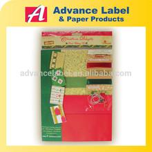 Holiday Paper craft Christmas Delights Holly Santa Joy DIY Greeting Card Making Kit